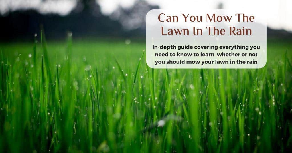 can you mow the lawn in the rain