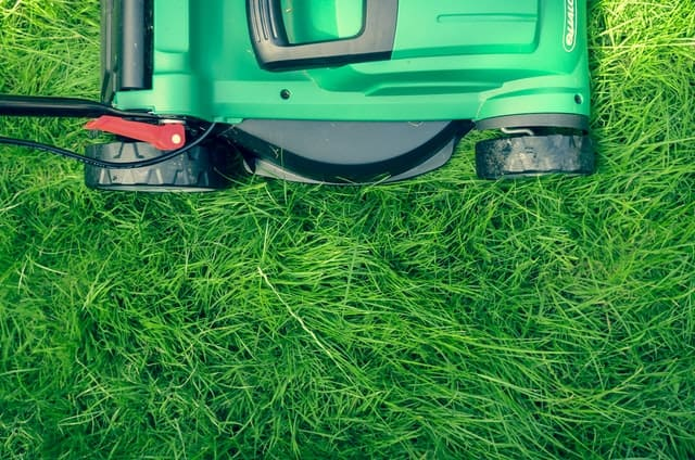 when to start mowing lawn