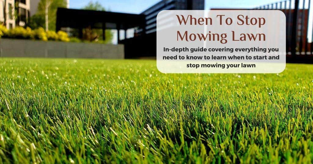 when to stop mowing lawn